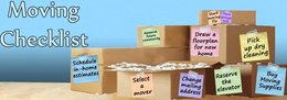 What Are The Basic Essentials For House Removals?